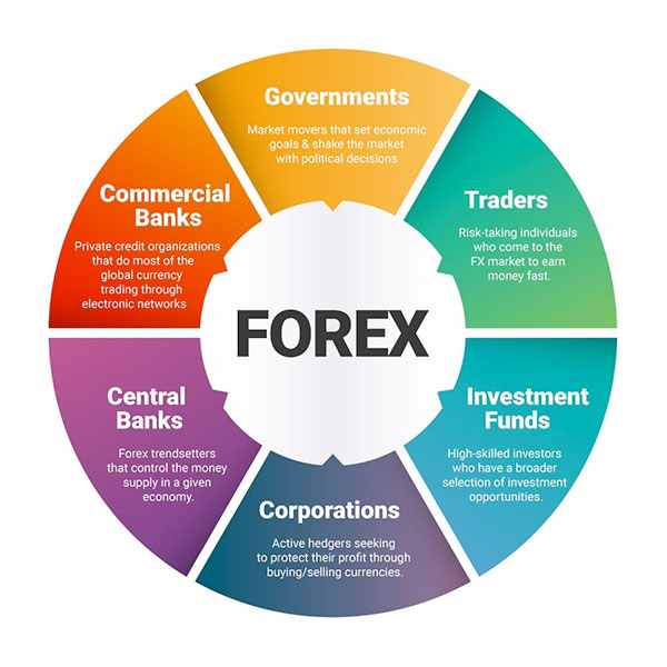 Forex Network  forex strategies robotron dollaro forex